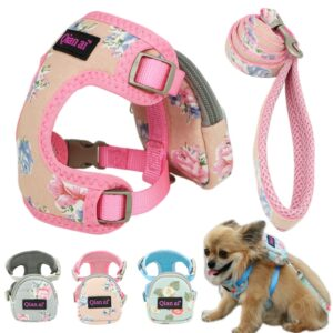 Pet Harness Leash Vest Snack Bag Adjustable Breathable Mesh Dog Harness Set For Small Medium Dogs Cat Vest Outdoor Walking