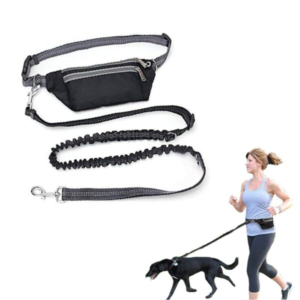 New Dogs Leash Waist Pocket Waterproof Hands Free Multi Function Dog Belt Running Product Adjustable Waist Dog Leashes DXQA16
